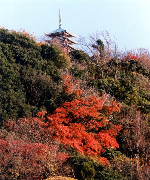 香貫山 紅葉