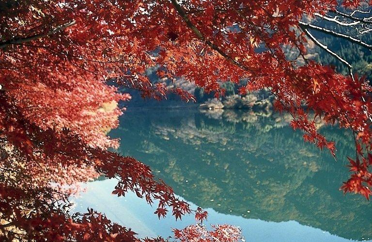 中山七里の紅葉