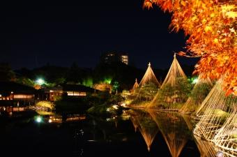 白鳥庭園ライトアップ