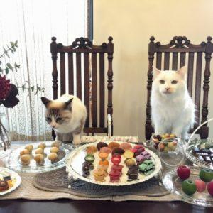 猫とチョコとスイーツ