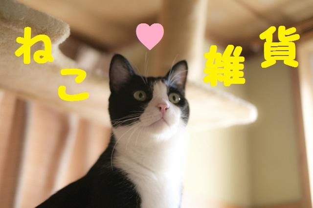 猫雑貨トップ